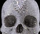 世界上最贵的艺术品 天价钻石头骨全球巡展图