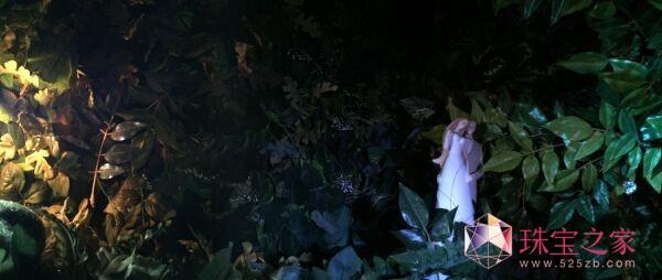 3D魔方内部景观――伊甸园