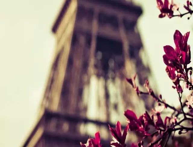 巴黎游学告一段落,带着对欧洲文化的深度了解和对造型、艺术文化的新的认知回到北京